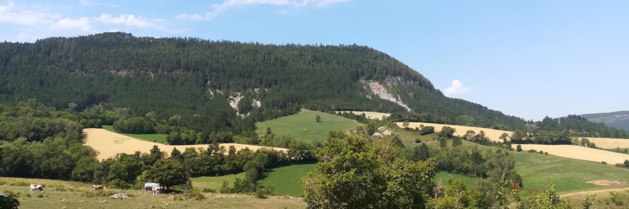Valdo Communauté de Communes Mont-Lozère